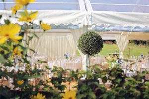 Topiary Ball Decoration