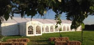 Marquee-in-the-grass